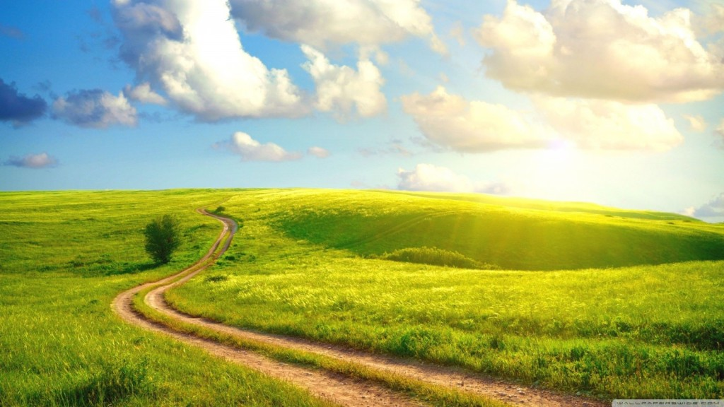field-path-wallpaper